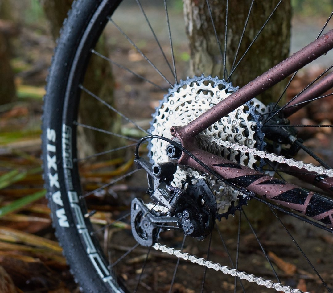 Close up photo of a VAAST bicycle's gear cassette and derailleur